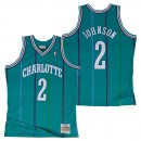 Hombre Charlotte Hornets Larry Johnson Hardwood Classics Road Swingman Camiseta Precio Barato